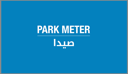 Cash to Business | Saida Park Meter